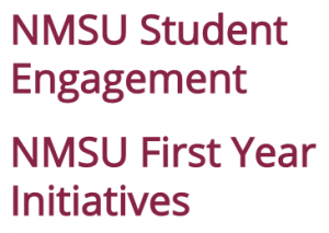 NMSU Student Engagement and NMSU First Year Initiatives